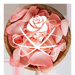 bnaeopc-rose-petals-bowl-small